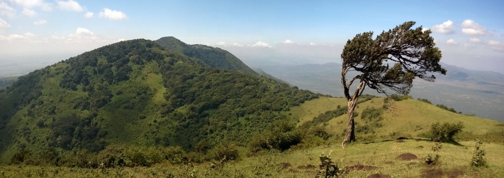 Ngongské hory. Foto: Hana Hindráková