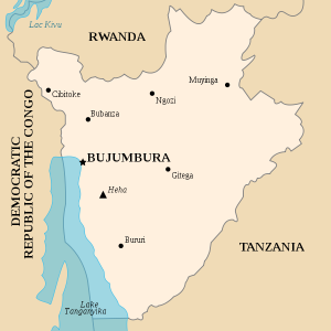 Většina uprchlíků míří do sousední Rwandy.