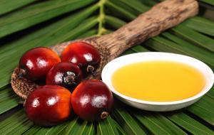 04-SJ_Palm-Oil-125-ab