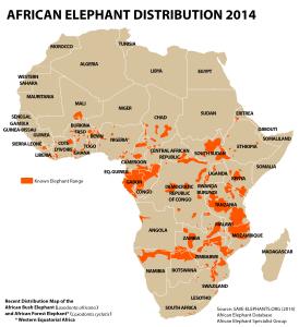 Mapa přibližného výskytu obou druhů slonů v Africe.