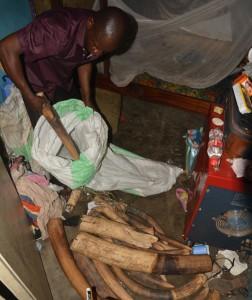 Překupník z mezinárodního syndikátu působícího od Konga přes Kamerun až po Nigérii. Ve svém domě v Brazzaville ukazuje při fingované koupi 126 kg slonoviny pralesních slonů (32 zabitých slonů), které v Kongu prodával přibližně za milion Kč. V následujících okamžicích byl zatčen i s chotí díky zásahu organizace PALF ze sítě EAGLE a byl odsouzen ke dvěma letům vězení. Po roce však za podivných okolností z vězení zmizel s falešnou lékařskou zprávou. Republika Kongo, 2015.